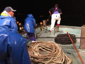 鹿渡島定置の漁船