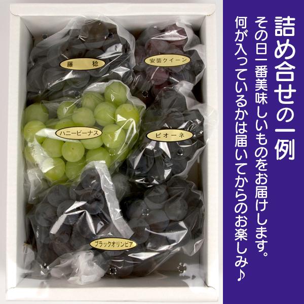 石川県産「大粒ぶどう詰め合わせ」