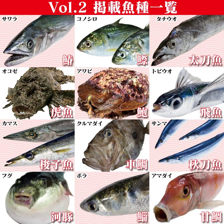 Fのさかなおもしろ図鑑Vol.2の魚種